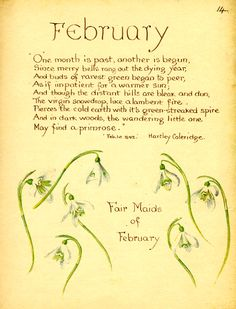 Nature Notes for 1906 ~ February - Debbie Overton Designs