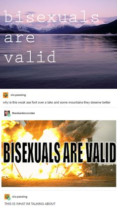 When there were two types of bisexual memes: 24 Times People Reacted Hilariously Differently To Life Lgbt Memes, Lgbt Quotes, Wife Quotes, Friend Quotes, Quotes Quotes, Alec Guinness, Bisexual Pride, Out Of Touch, Funny Pictures