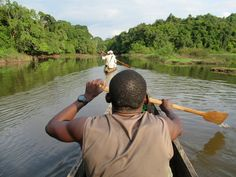 Ecotourists enjoy a pirogue ride through a scenic wetland off Lake Oguemoué in Gabon, Central Africa. Africa, Afro