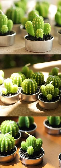 mini succulent candles  Get yours at: https://www.etsy.com/ca/listing/465776665/miniature-green-cactus-candles-unique?ref=shop_home_active_1