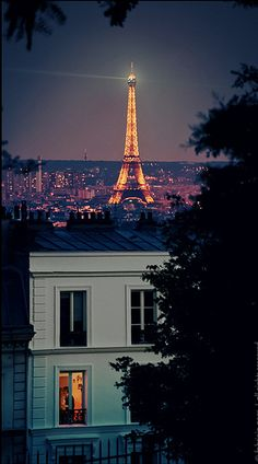 From Paris With Love by Fabrizio Pece