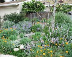 The annual Going Native Garden Tour is coming April 19. Photo: Stephanie Morris, GNGT
