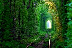 トンネルオブラブウクライナ