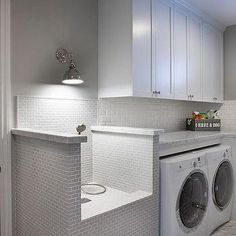 White and Gray Laundry Room with Elevated Dog Shower