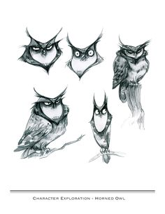 Owl sketching by Rachel Wolfe Cartoon Sketches, Animal Sketches, Animal Drawings, Art Drawings, Character Design Cartoon, Character Drawing, Sketch Inspiration, Character Design Inspiration, Bird Illustration