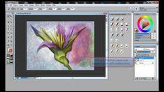 Using Digital Watercolors (with Corel Painter & Wacom tablet)