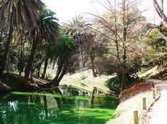 Parque Rodó - Montevideu/URU  . Um parque em meio a cidade e fácil acesso após seu passeio pela orla. O Uruguai é assim bonito na simplicidade. .  La no blog tem roteiro completo guia gastronômico e todas as dicas do Uruguai! acesse http://ift.tt/1Mv9A8t .  Conhece o ig @brazilworldoficial ? Só fotos lindas!!! . . . #aosviajantes #uruguai #montevideu #parquerodo #blogdeviagem #wanderlust #braziloverss #ferias #rbbv #viagem #viajar #paisagem #trip #turismo #roteiro #dicasdeviagem…