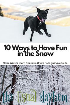 10 ways to have fun in the snow that don't have to take all day! Even if winter isn't your favorite, a few minutes outside can improve your mood. Forest School Activities, Winter Activities For Kids, Nature Activities, Outdoor Activities, Outdoor Play Areas, Outdoor Art, Concept Ships, How To Make Snow, Nature Crafts