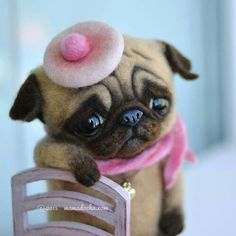 Seeing this pug like that is how I feel :-(