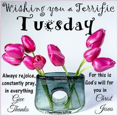 Wishing You A Terrific Tuesday Tuesday Quotes Good Morning, Happy Tuesday Quotes, Good Morning Friends, Good Morning Greetings, Good Morning Good Night, Good Morning Wishes, Tuesday Humor, Morning Thoughts, Daily Thoughts