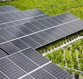 Solar PV Cell Cost Has Decreased an Incredible 99% Since 1977