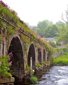 The Inistioge Bridge over the River Nore, Co. Kilkenny