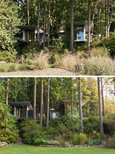 This modern cabin in the forest has grown over the years from a simple bunkhouse to a full retreat with multiple bedrooms for family and friends.