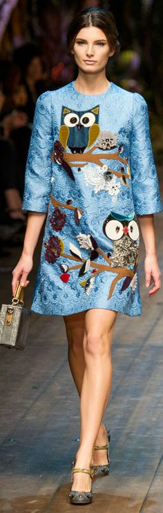Dolce & Gabbana Fall 2014 / Winter 2015 RTW, Milan Fashion Week, Italy---  OWLS....AHHH...need this now.