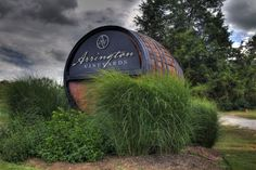 15 Unique Tennessee Day Trips that you absolutely must take , featuring Arrington Vineyards, Downtown Franklin, Leiper's Fork, and the Natchez Trace! Visit Tennessee, Tennessee Vacation, Nashville Tennessee, Clarksville Tennessee, Tennessee Camping, Tennessee Attractions, Murfreesboro Tennessee, Franklin Tennessee, Tennessee River