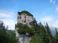 Bucegi Mountains. The Bear-man.