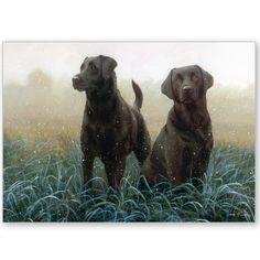 Morning Dogs - Labrador Retrievers.