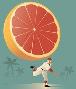 Grapefruit League (Poster de John W. Framed Wall Art, Wall Art Prints, Fine Art Prints, Canvas Prints, Framed Prints, Florida, Commercial Art, Spring Training, Amazing Drawings
