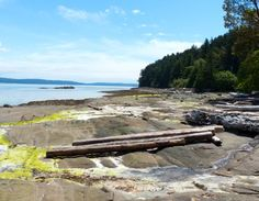 Blue Heron Park off Yellowpoint Road in Nanaimo, B.C. makes a scenic stop on a Vancouver Island Road Trip.