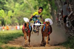 Little jockey in action Photography by Arnov Setyanto