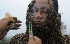 An apprentice of beekeeper She Ping uses burning incense to drive off bees from She's face as he assists covering She's body with bees in order to break a world record in Chongqing Municipality. She Ping, 32, broke the world record on Wednesday by covering his body with 33.1 kilograms of bees (about 331,000 bees), overtaking the last world record of 26.8 kilograms of bees which was attempted by a Jiangxi province beekeeper Ruan Liangming in 2008, local media reported. (REUTERS)