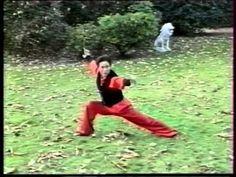 Kung-Fu Wushu