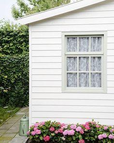WEBSTA @ yvestown - The @4everhortensia hydrangeas are in bloom!! More about that on my blog. #foreverandeverhydrangeas #hydrangeas #hydrangeasaremyfavorite #proudgardener #summergarden