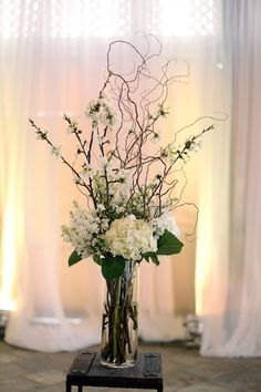 Hydrangeas, Stock and Curly Willow
