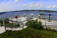 Observation Platform Fort Point, Outdoor Furniture Sets, Outdoor Decor, Natural Beauty, Entrance, Past, Trail, Platform, Explore