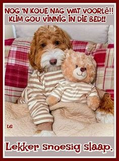 Good Night Wishes, Good Night Quotes, Goeie Nag, Teddy Bear, Afrikaans, Words, African Fashion, Winter, Pictures