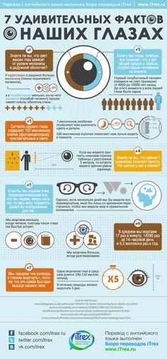 Знаете ли вы, что первый голубоглазый человек появился на свет примерно от 6000 до 10000 лет назад. До этого момента у всех людей глаза были карими. Об этом и о других удивительных фактах читайте в инфографике про глаза человека.#инфографика