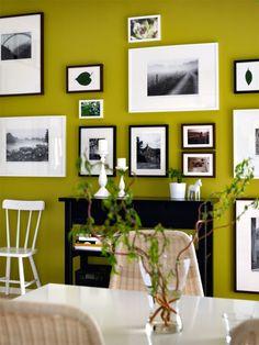 Die moosgrüne Wand gibt den Bildern mit weißen Passe partouts mehr Intensität.