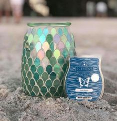 warmer SALE ITEM-Morning Glory Electric wax burner light /& Celebration scents