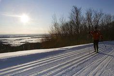 Skiing - Gatineau Park
