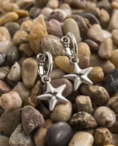 Mini Starfish Hoop Earrings