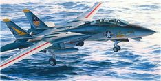 Grumman F-14A Tomcat del VFA-113 embarcardo en el USS Constellation. Koike Shigeo. http://www.elgrancapitan.org/foro/viewtopic.php?f=68&t=18543&start=4950#p925633