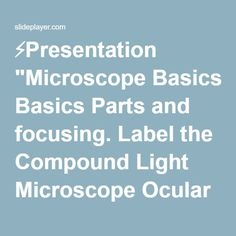 how to use a compound light microscope compound light microscope