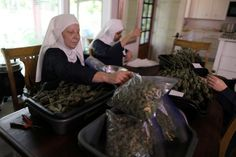 """The Sisters of the Valley, California's self-ordained """"weed nuns,"""" are on a mission to heal and empower women with their cannabis products."""