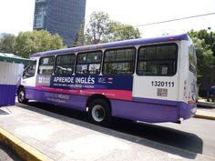 BUS DE DISEÑO ESCUELA DE INGLES BRITISH MÉXICO CONTRATA