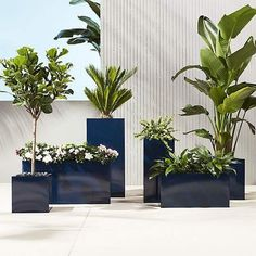 6968ecb7e31 Large Indoor Planters, White Planters, Modern Planters, Outdoor Planters,  Outdoor Landscaping,