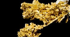 Gold Falls according to the news. But this one is something you should grab.