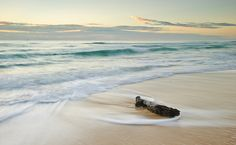 washed up missle by andrew katic, via Flickr
