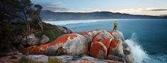 Best of Australia Vacation Packages. Discover the rugged beauty and unique wildlife of Tasmania on this luxurious outdoor adventure! Cool Countries, Vacation Packages, Tasmania, Along The Way, Australia Travel, Hotels And Resorts, East Coast, Places To See, The Best