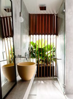 HYLA Architects , Derek Swalwell · Belimbing Avenue · Divisare