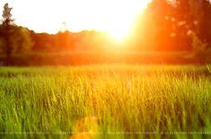 So bright and sunny:)