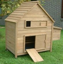 Kippenhok Sussex 11 Hout Raising Chickens, Shed, Outdoor Structures, David, Google, Hens, Barns, Sheds
