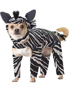 Animal Planet PET20100 Zebra Dog Costume, Large ❤ California Costume Collections