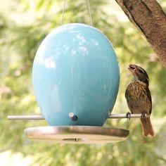 Egg Bird Feeder Blue by Jim Schatz