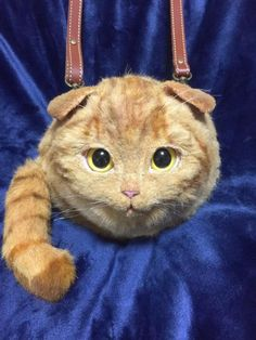 The Cat Bags To End All Cat Bags
