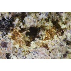 Yuanfuliite Nuestra Señora del Carmen Mines, La Celia,Jumilla, Murcia, Spain Taille=35 x 25 x 20 mm